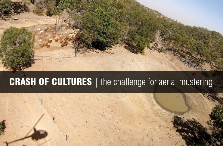 Screenshot the opening titles of the aerial mustering video
