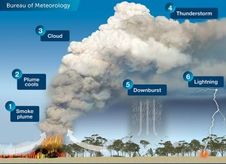 An illustration depicting the 6 stages of development of a pyrocumulonimbus cloud.