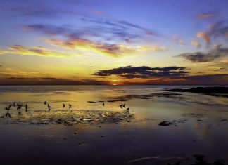 image   Ricketts Point, Chris Robert Perry