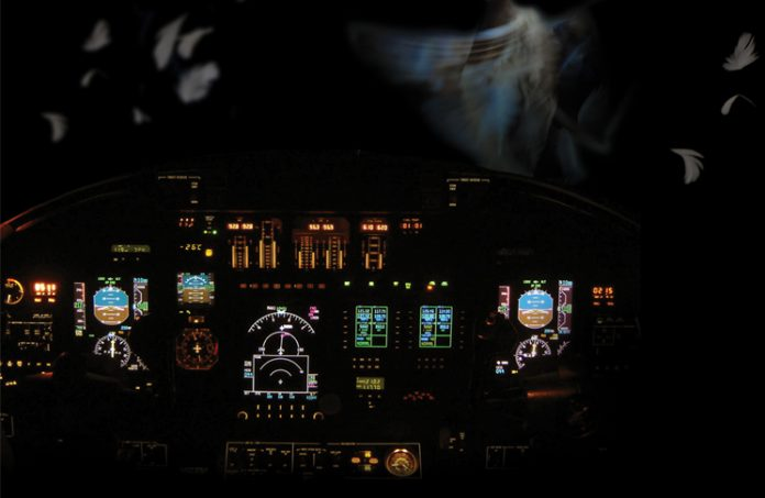 night view of aircraft cockpit with duck feathers outside